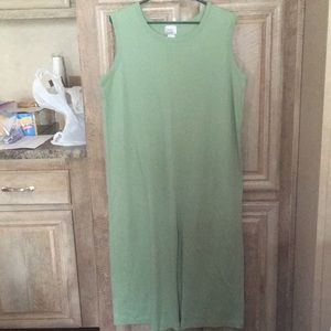 Pretty Soft Green Color Maxi Dress (Size Large)